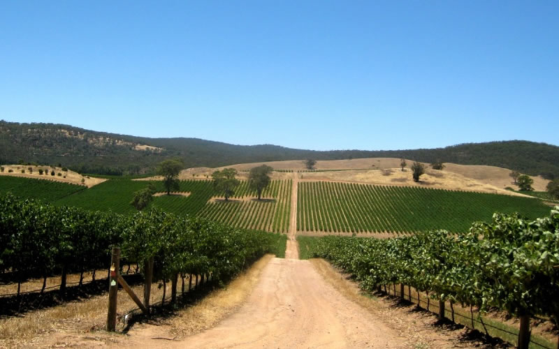 Barossa Valley eAccommodation